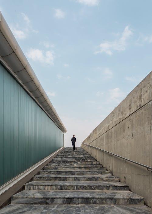 Foto profissional grátis de andando, caindo, caminhando