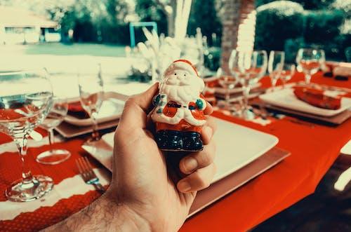 Foto d'estoc gratuïta de bifurcació, decoració nadalenca, dia, estovalles