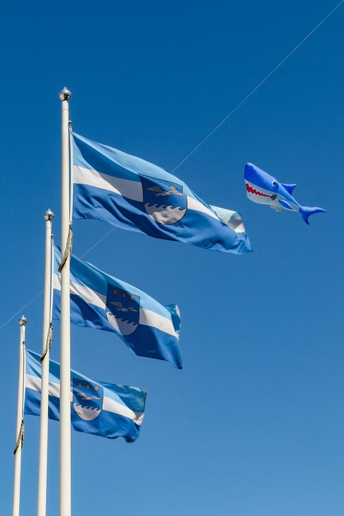 White Blue and Red Flag