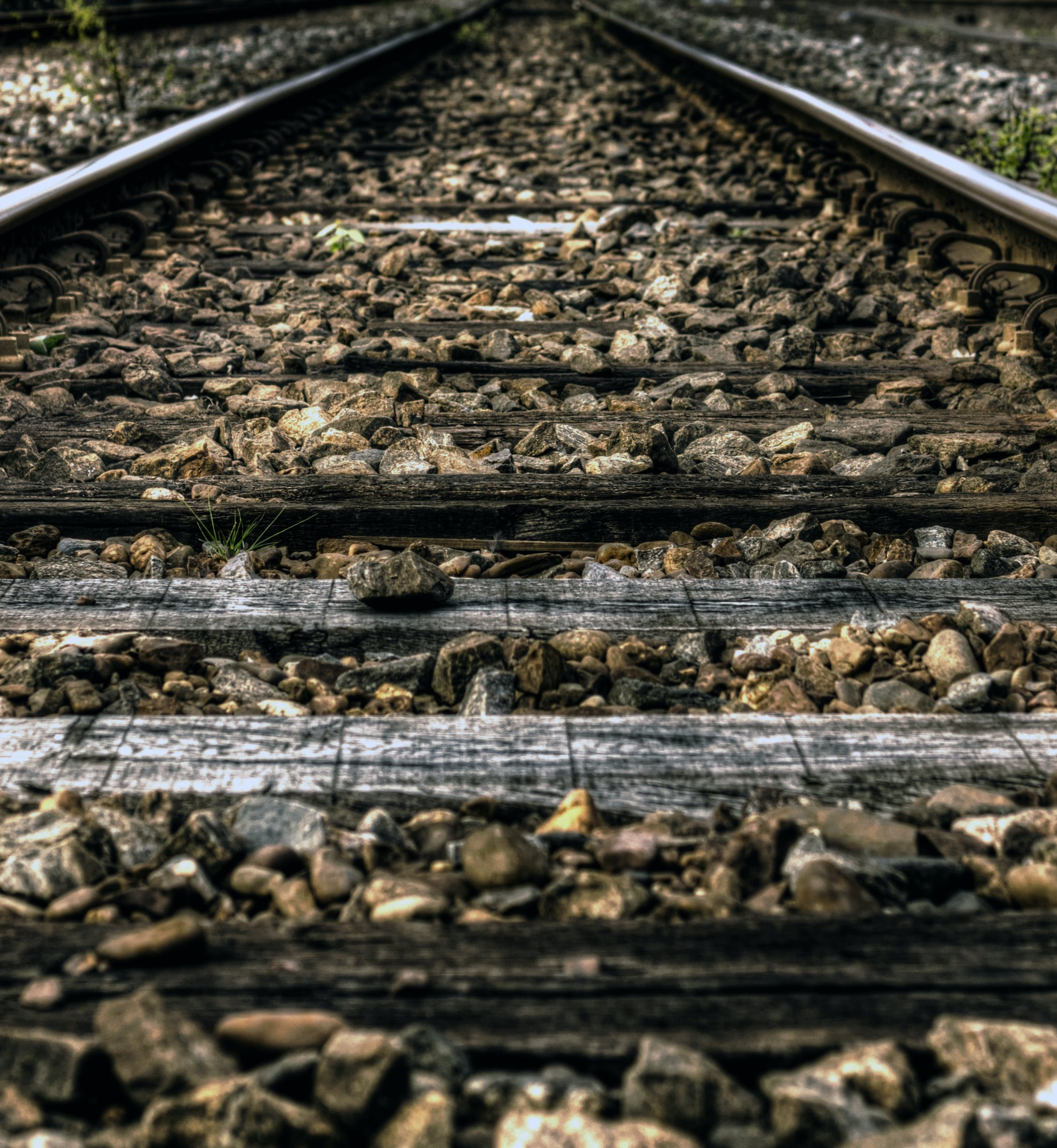 Free stock photo of rails, train, path, way