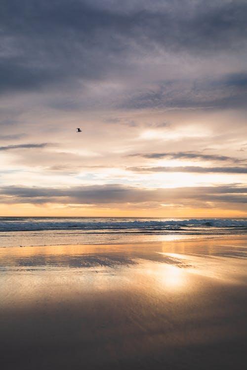 Beach Scenery at Sunset
