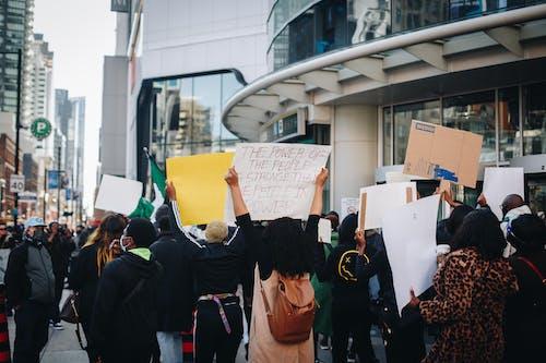 Foto stok gratis aktivis, aktivisme, berita