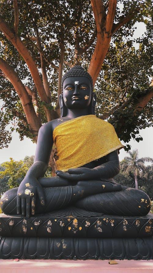 インド, スピリチュアル, 仏, 大きな目の無料の写真素材