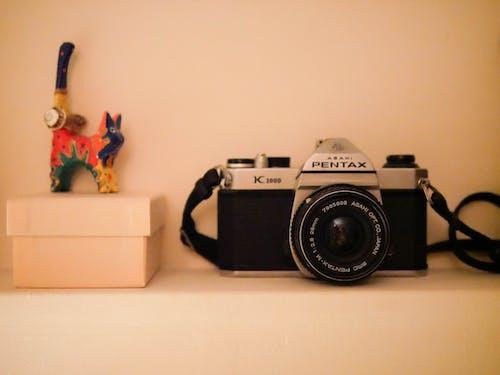 คลังภาพถ่ายฟรี ของ Pentax, กล้อง, การถ่ายภาพ, ย้อนยุค
