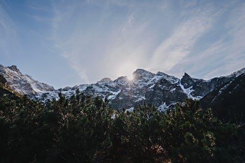 겨울, 경치, 골짜기의 무료 스톡 사진