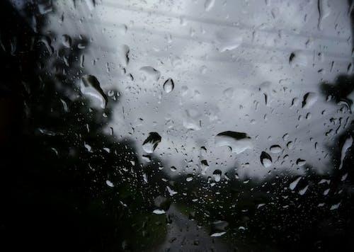 #雨滴の無料の写真素材