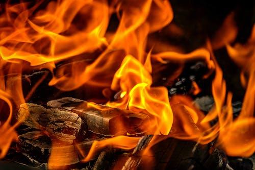 Close Up Photo of a Blazing Fire