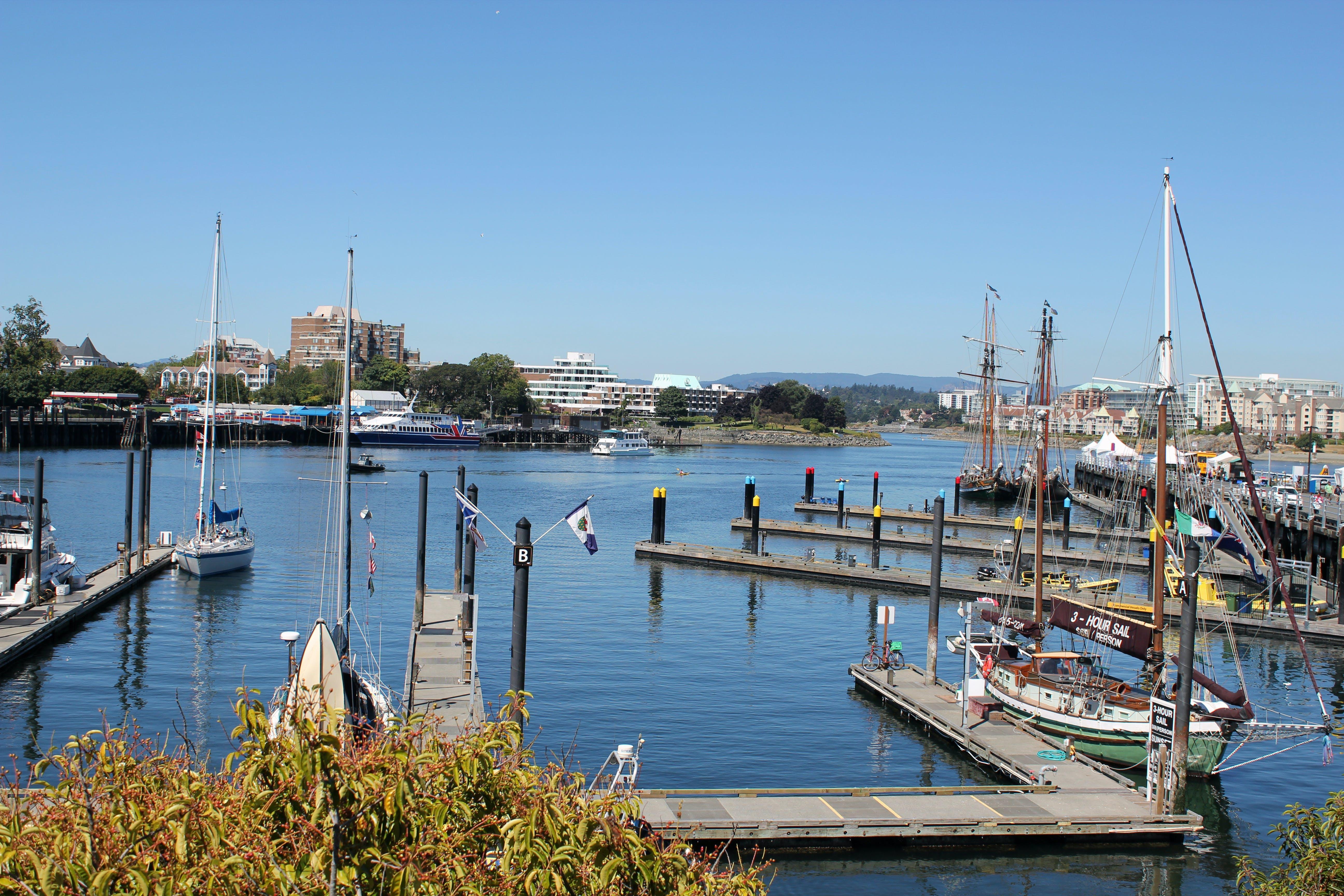 Free stock photo of port