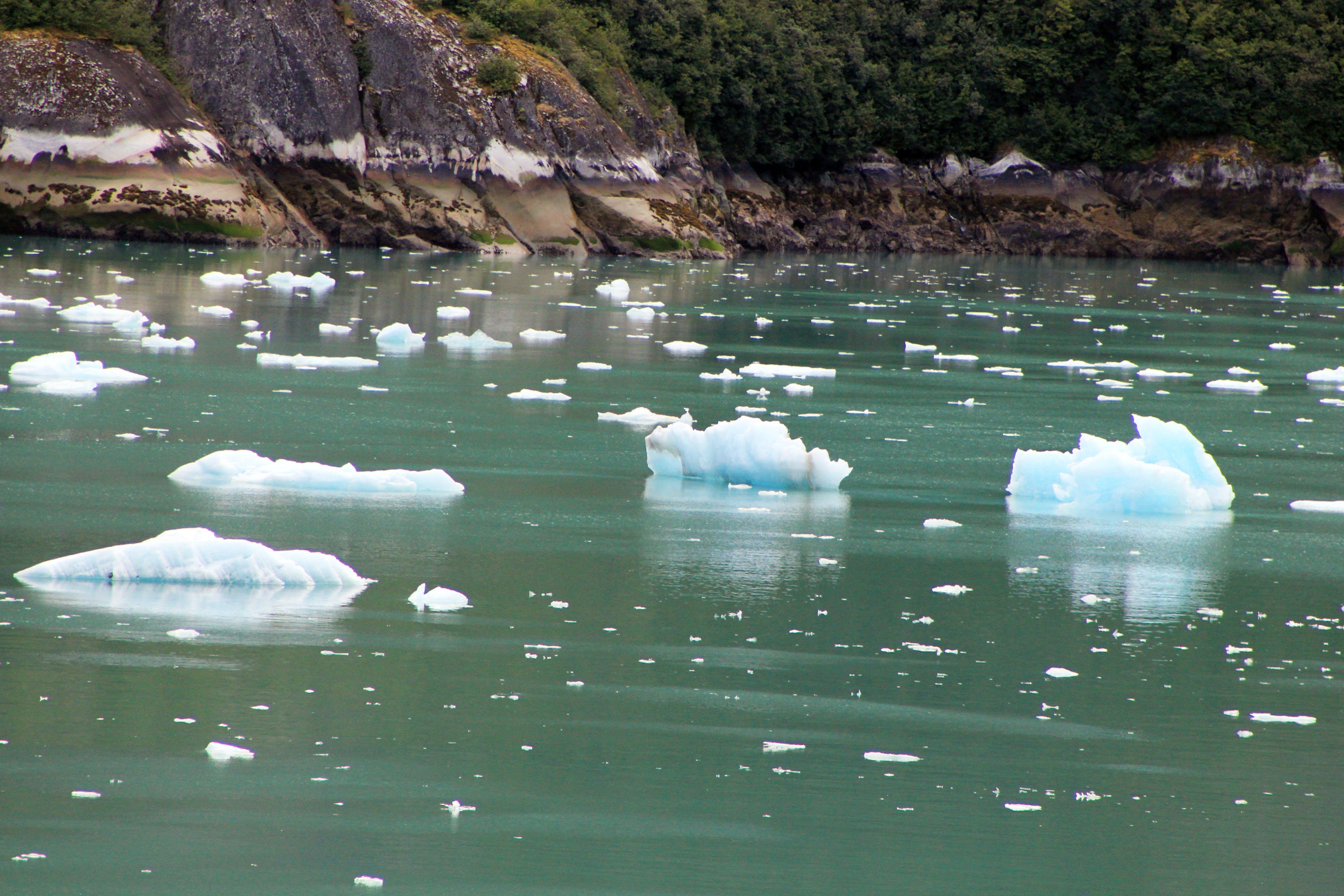 Free stock photo of sea, ice