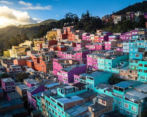 哥伦比亚, 商業, 城市 的 免费素材图片
