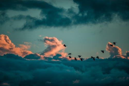 Kostenloses Stock Foto zu abend, Ãœber den wolken!, dämmerung