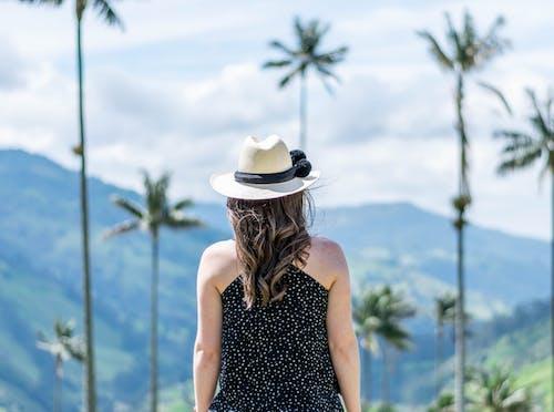 享受, 休閒, 假期 的 免费素材图片