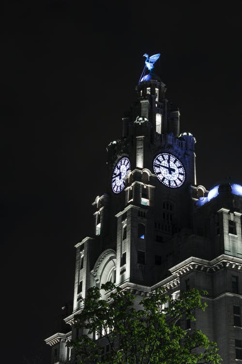 Fotos de stock gratuitas de edificio del hígado, liverpool, noche