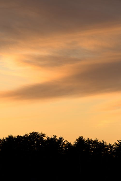 경치가 좋은, 구름, 새벽, 실루엣의 무료 스톡 사진
