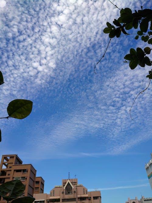 天空, 户外 的 免费素材图片