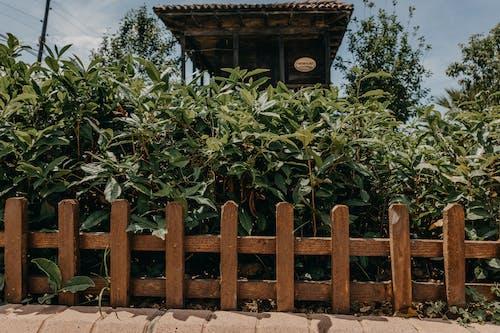 原本, 墓園, 家 的 免費圖庫相片