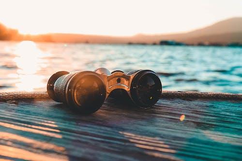 Ingyenes stockfotó felfedezés, gombák, kék víz, nagy medve témában