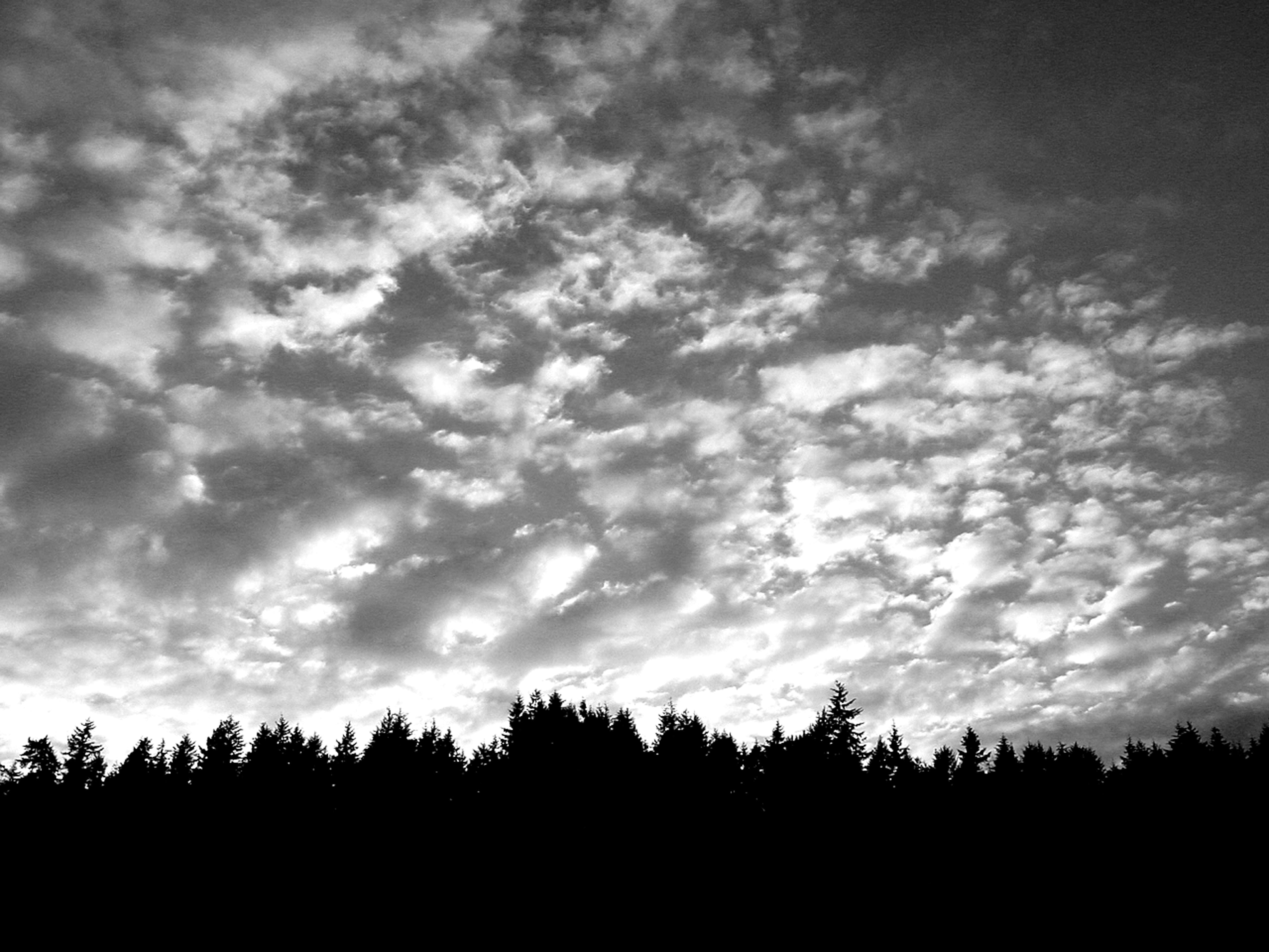 Free stock photo of grayscale clouds