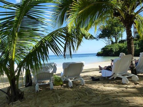 Бесплатное стоковое фото с на пляже, шезлонги