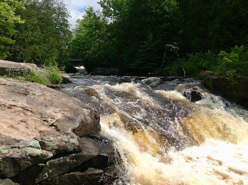 Бесплатное стоковое фото с водопады, ричи падает