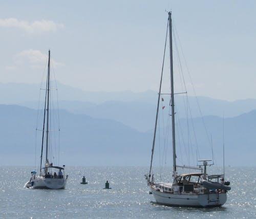 Foto d'estoc gratuïta de a l'àncora, velers