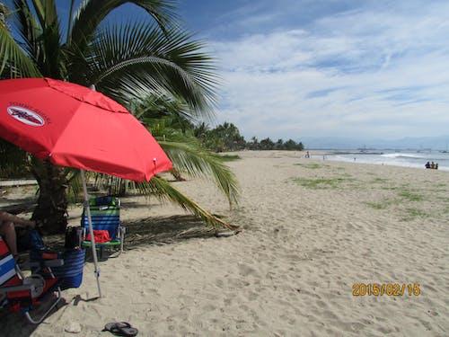 Бесплатное стоковое фото с пляжная сцена. красный зонт