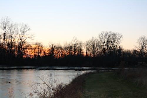Darmowe zdjęcie z galerii z drzewa, natura, zachód słońca