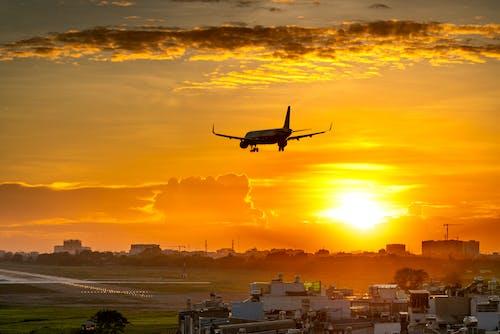 Ảnh lưu trữ miễn phí về bay, bình minh, bờ biển