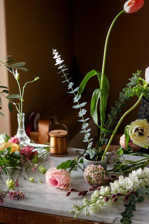 Photos gratuites de amour, arrangement floral, bouquet