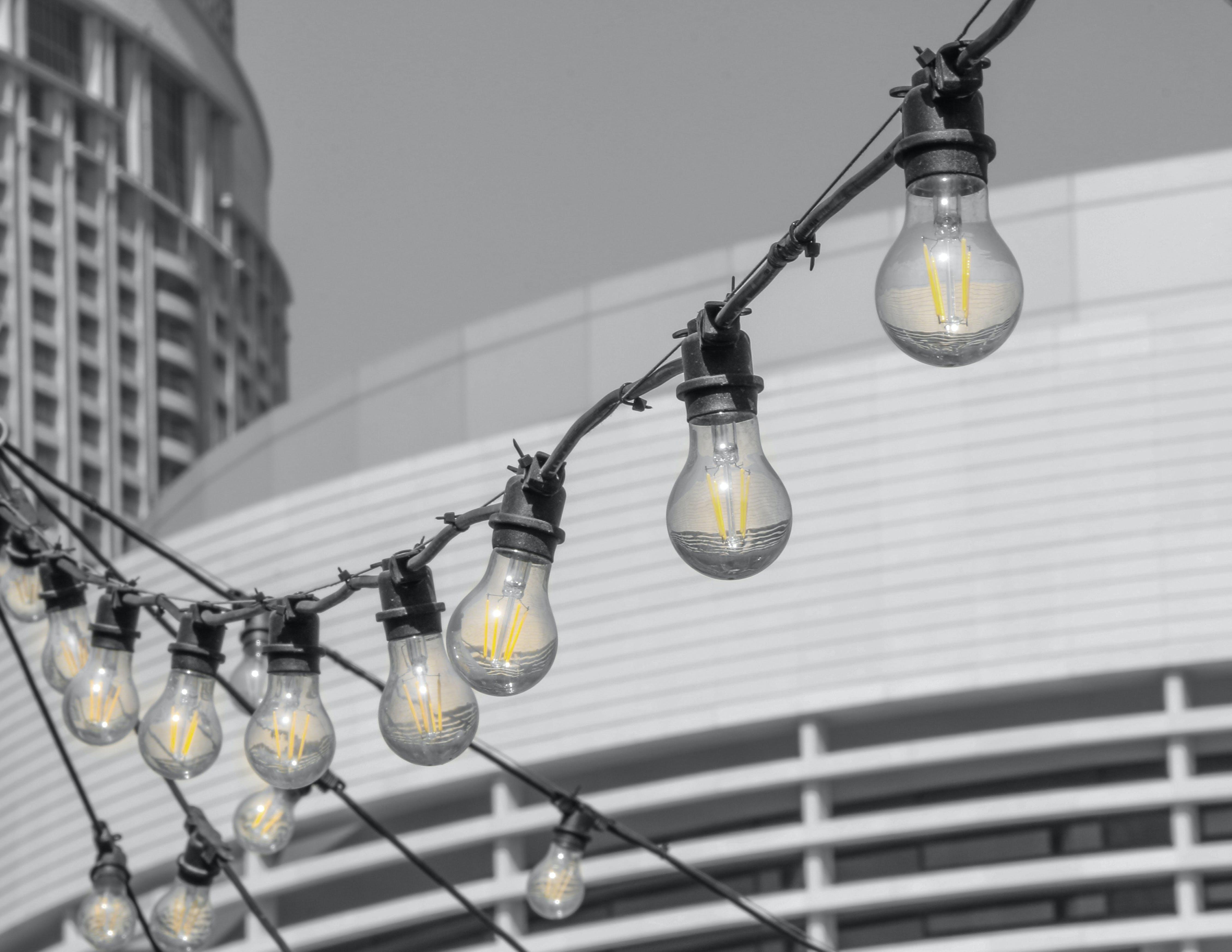 Free stock photo of bulb, bulbs, electric light, light bulb
