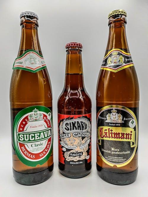 Free stock photo of beer, beer bottles, bere