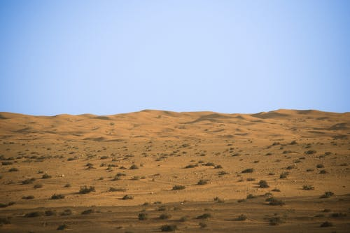 Free stock photo of desert, dubai, shahbaz