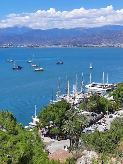 Boats Docked on the Marina