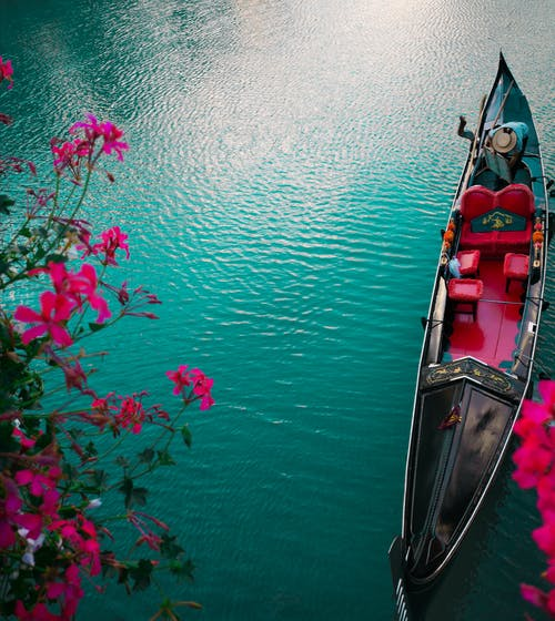 Fotos de stock gratuitas de barca, colores, flores