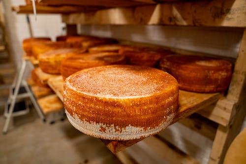 Free stock photo of agbiopix, bakery, baking