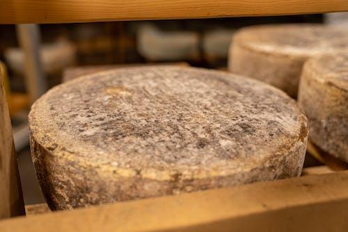 Free stock photo of agbiopix, cheese, cheese wheel