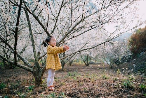 Ilmainen kuvapankkikuva tunnisteilla aasialainen tyttö, jousi, kevät