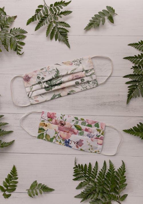 Kostnadsfri bild av blad, blomma, dekoration