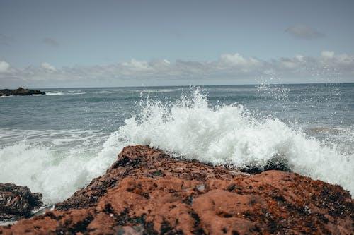 Immagine gratuita di acqua, costa rocciosa, mare