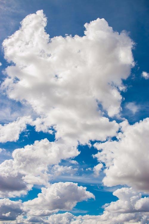 Kostenloses Stock Foto zu bewölkt, draußen, flaumig