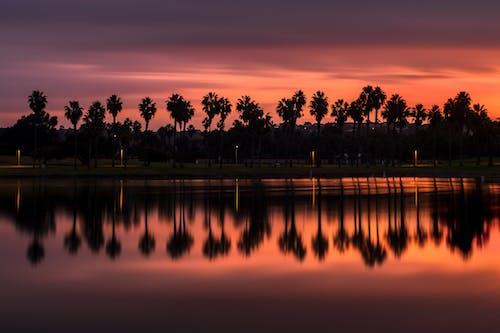 Free stock photo of california, color, dawn