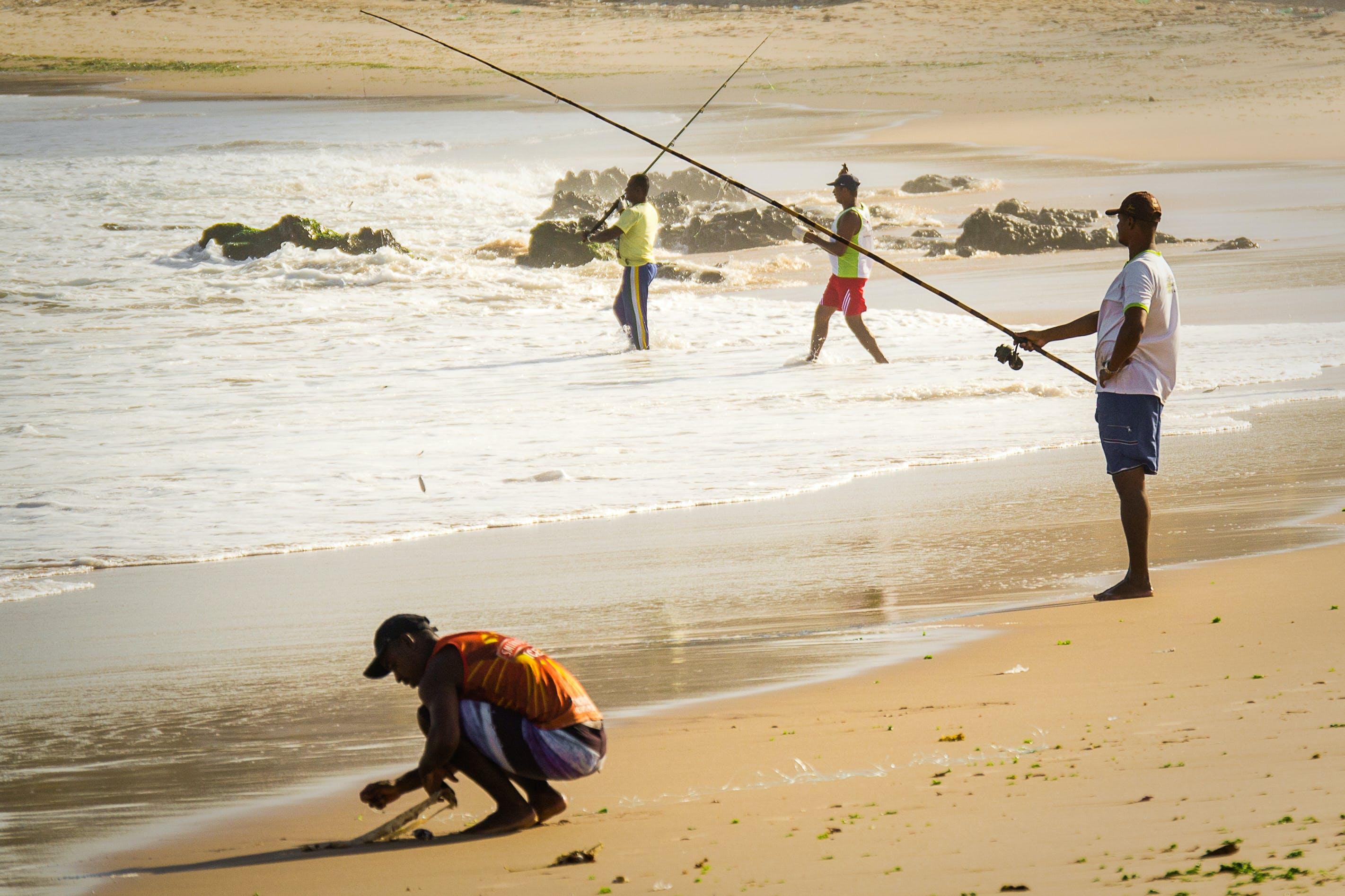 Free stock photo of fishing, fishing tackle, beach, people
