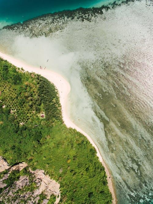 Immagine gratuita di bagnasciuga, da sopra, mare