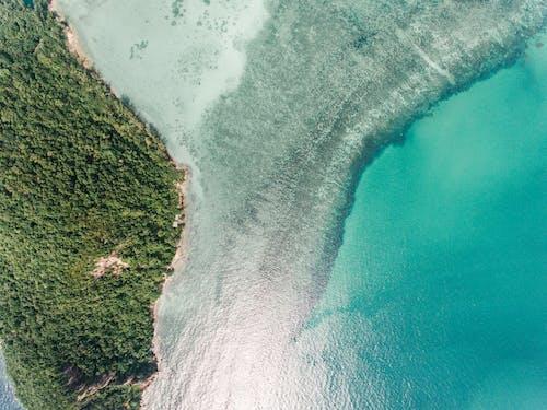 Immagine gratuita di da sopra, mare, natura