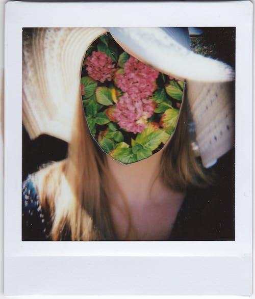 Foto d'estoc gratuïta de Polaroid