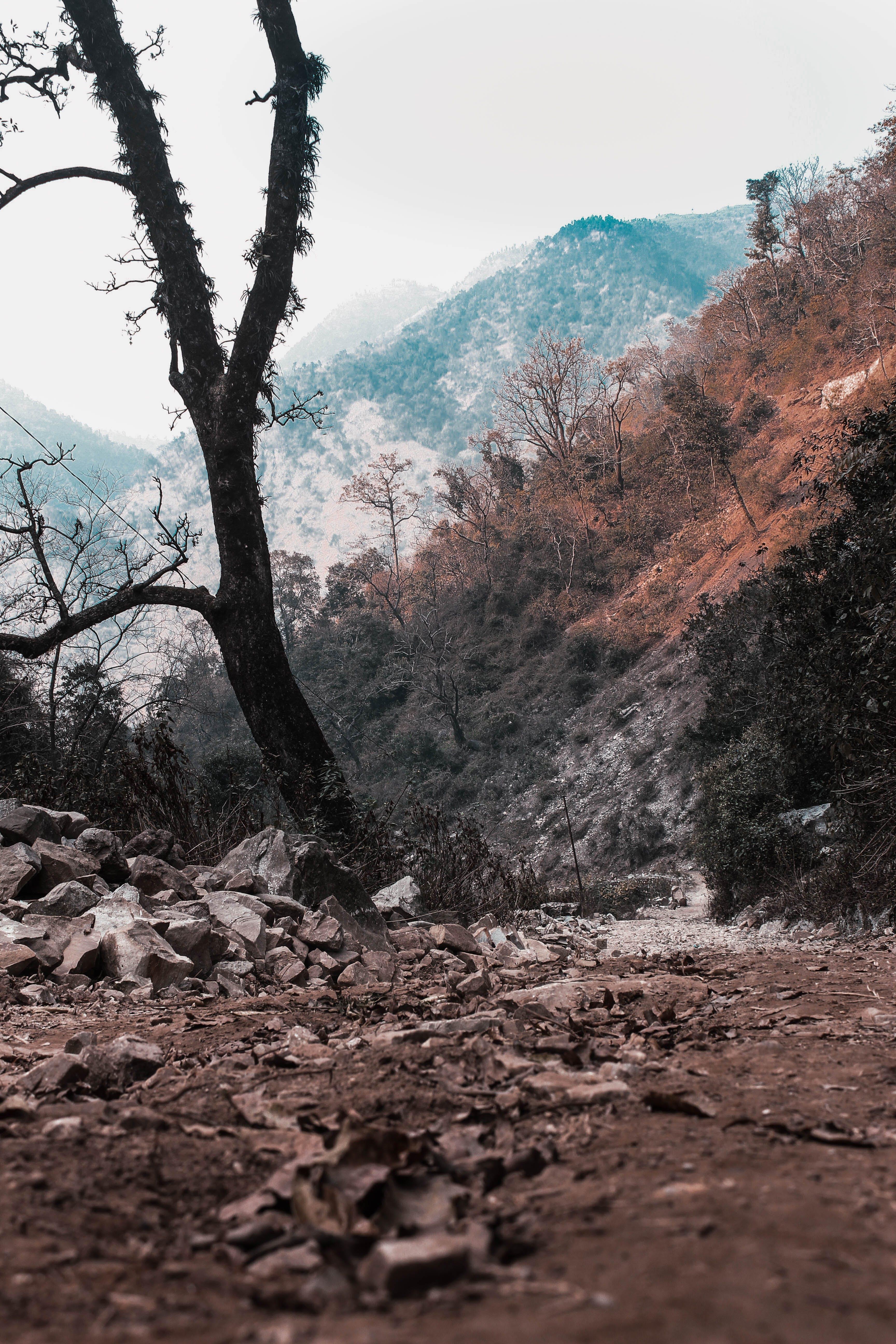 Бесплатное стоковое фото с гора, странствия, странствовать