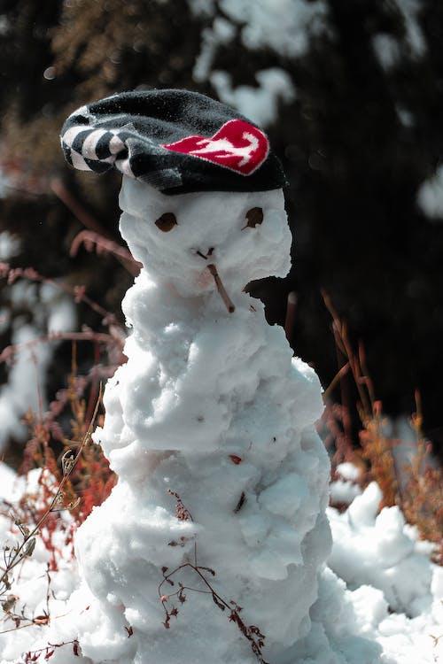 Kostenloses Stock Foto zu berg, schnee, schneemann, winter