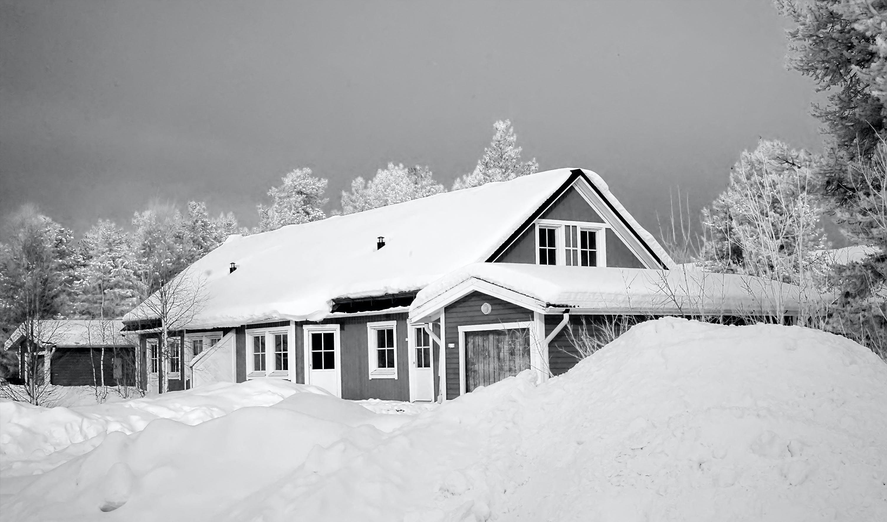 enviro, 下雪的, 冬季, 冰 的 免費圖庫相片