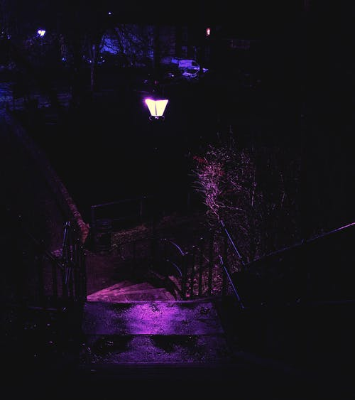 Free stock photo of downstairs, light, metal railings, nature