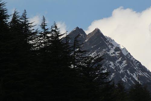 Бесплатное стоковое фото с landsacpe, mounatian, белый, голубой